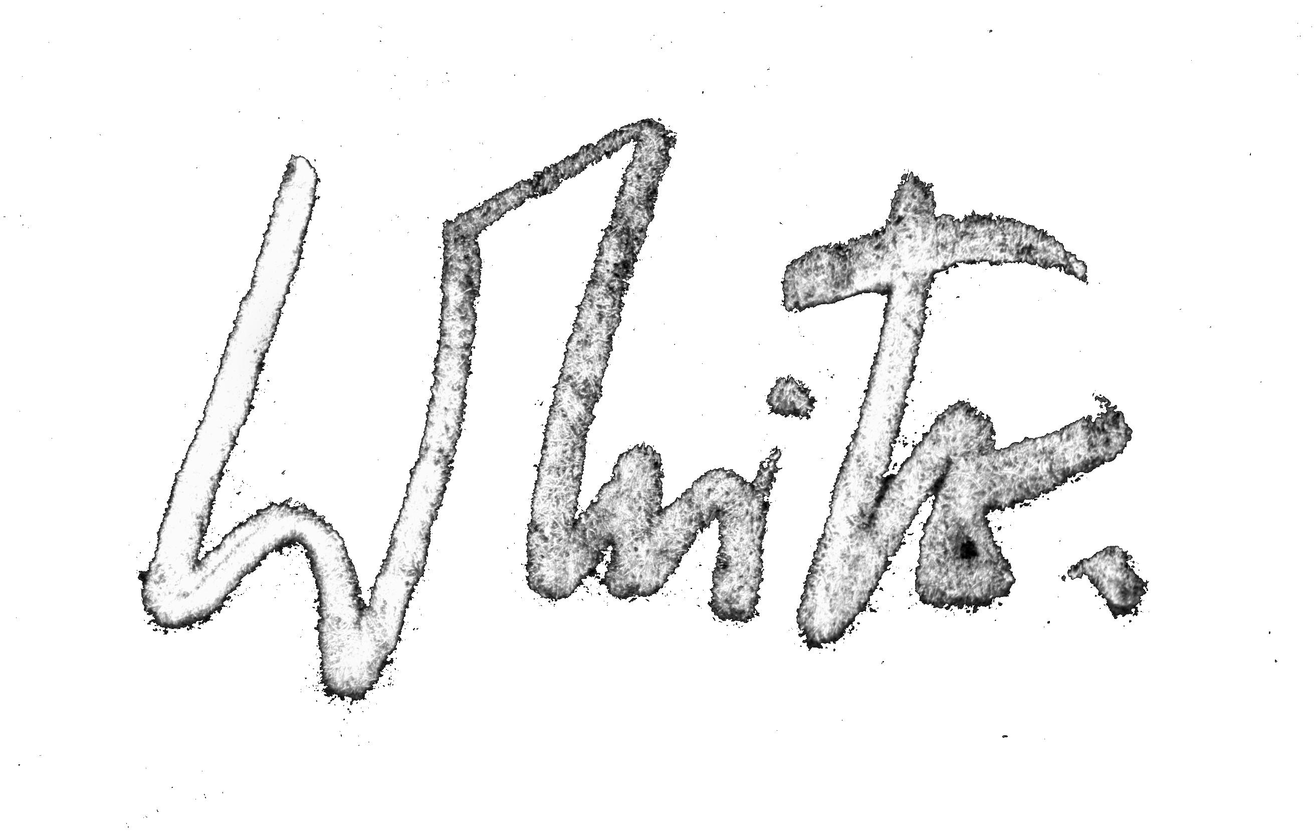 barry-white.net Logo